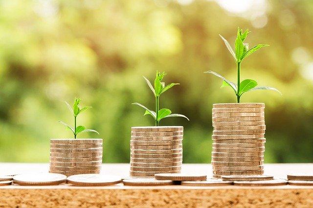rostouci investice